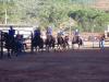 Catas Altas cancela cavalgada da sede por conta da COVID19(Foto: AcomPMCA)