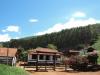 Fomento Florestal da CENIBRA garante renda para produtores rurais(Foto: Divulgação )